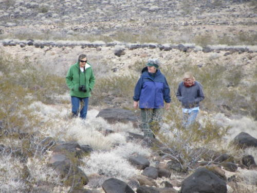 Nevada Archaeological Association 2012 Lake Mead12