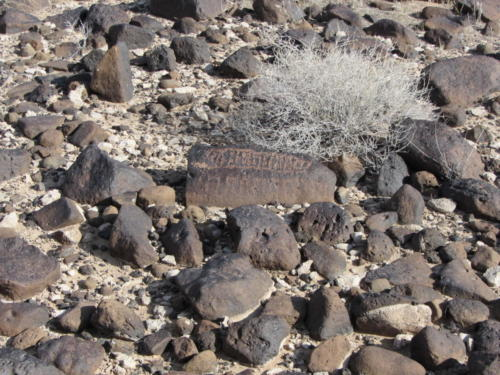 Nevada Archaeological Association 2012 Lake Mead23