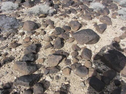 Nevada Archaeological Association 2012 Lake Mead33