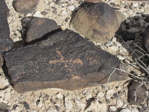 Nevada Archaeological Association 2012 Lake Mead41