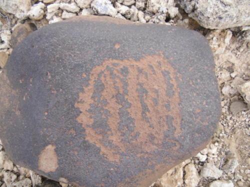 Nevada Archaeological Association 2012 Lake MeadG8