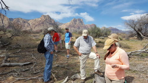 Nevada Archaeological Association 2017 Conference 30058