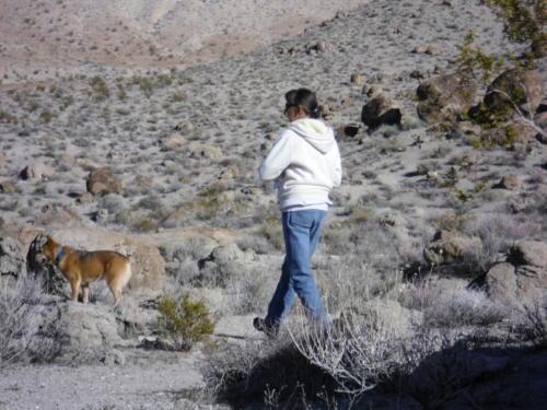 Nevada Archaeological Association 2001 Hells Half Acre142