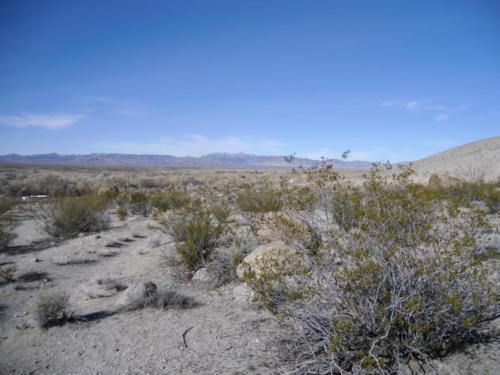 Nevada Archaeological Association 2001 Hells Half Acre154