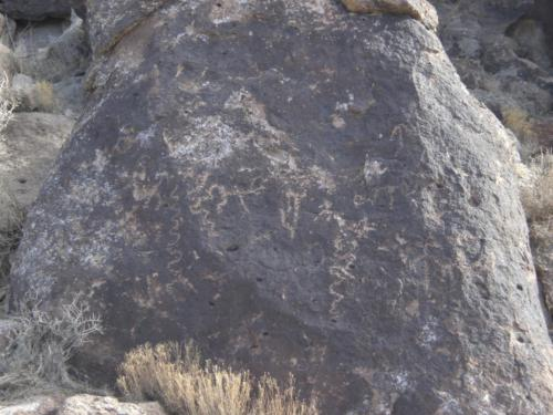 Nevada Archaeological Association 2008 January976