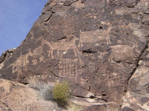 Nevada Archaeological Association 2008 January991