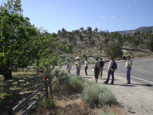 Nevada Archaeological Association 2009 Great Basin1832
