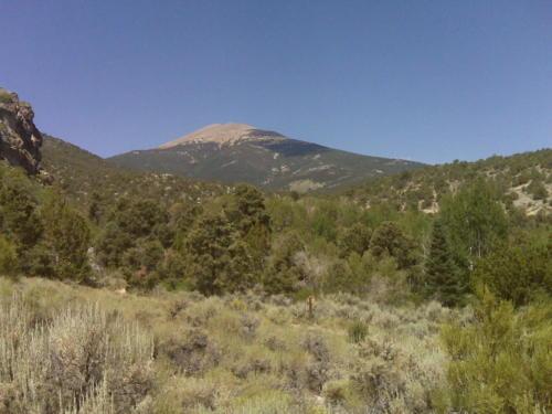 Nevada Archaeological Association 2009 Great Basin289