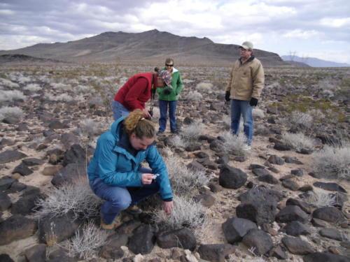 Nevada Archaeological Association 2012 Lake Mead01
