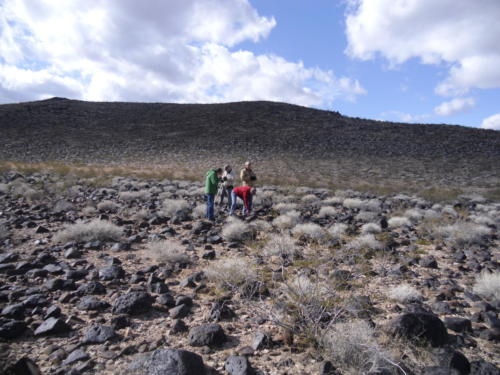 Nevada Archaeological Association 2012 Lake Mead87