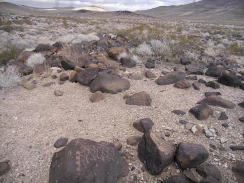 Nevada Archaeological Association 2012 Lake MeadG08
